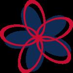 Boston_Flower.png