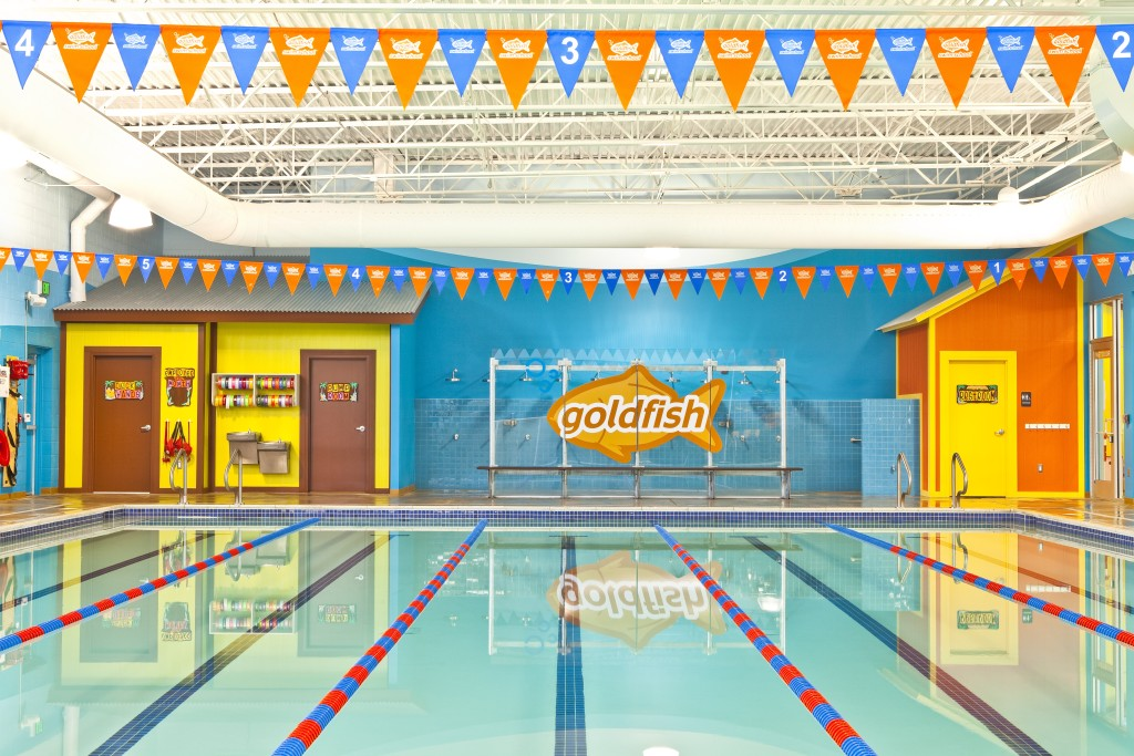 goldfish swim school needham