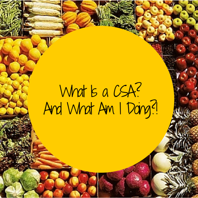 colorful fruits and vegatables-what is a CSA and what am I doing?