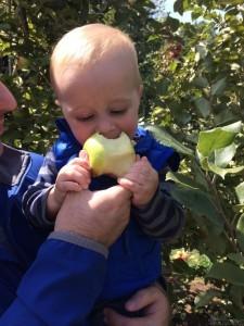 Jack & apple