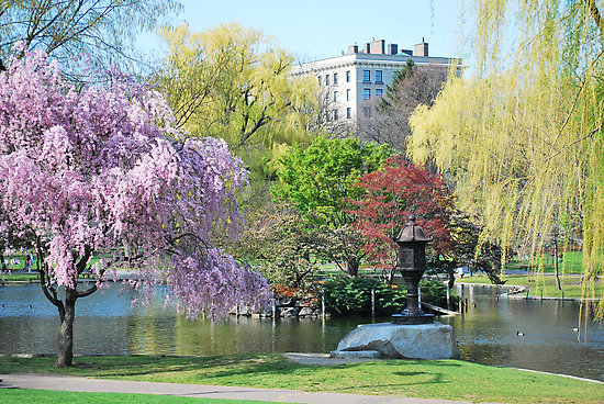 Public-Gardens