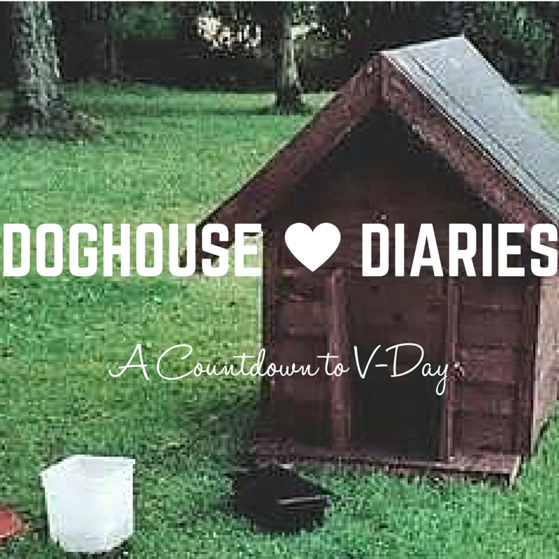 Doghouse Diaries :: A Countdown to V-Day - Boston Moms Blog