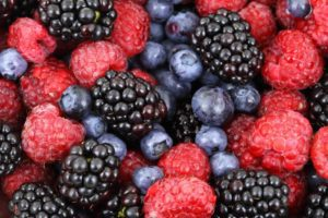 Berry Picking Near Boston - Boston Moms Blog