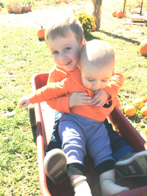 pick pumpkins
