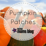 Pick-Your-Own Pumpkin Patches in Eastern MA