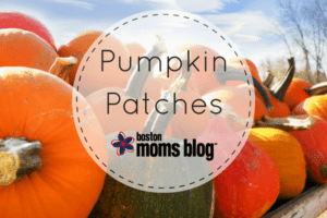 pumpkin patches in eastern MA