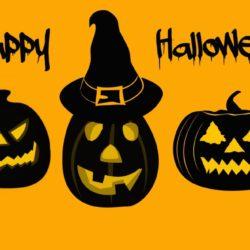 pumpkins-1728291_1920