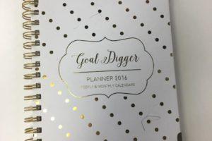 goal_digger_planner