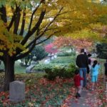Family Hikes and Nature Walks Around Boston