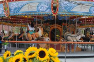 birthday party Greenway Carousel - Boston Moms Blog