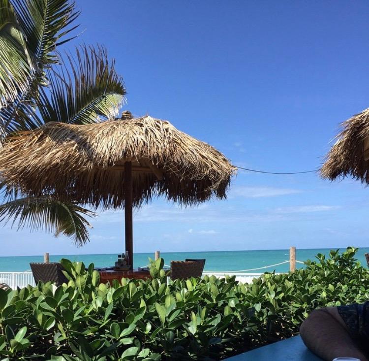 Palm trees, beach and sun in Vero Beach, Florida