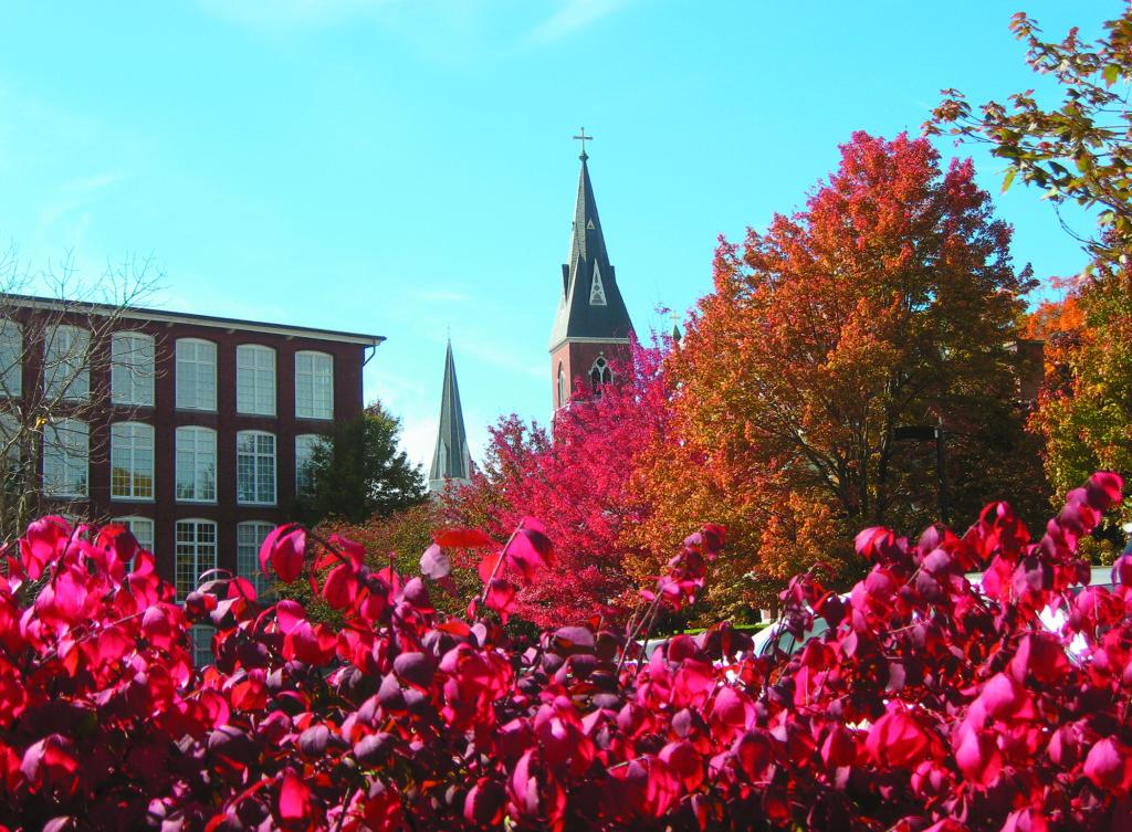 mohawk trail - leaf peeping - boston moms blog