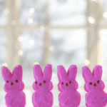Boston-Area Easter Guide :: Bunnies, Brunches, and Egg Hunts!