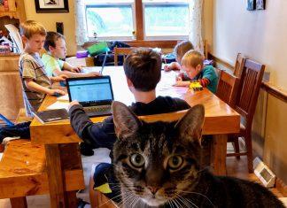 homeschool flop - Boston Moms