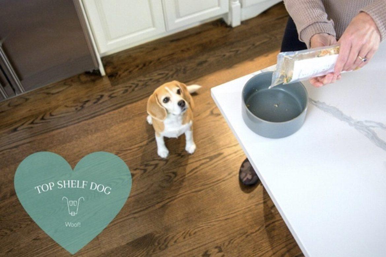 Top Shelf Dog Food - Boston Moms